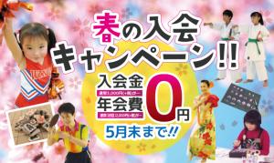 春の入会キャンペーン実施!(3月16日~5月末まで)の写真